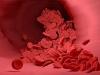 피 끈적끈적해지는 고지혈증, 젊은 2,30대도 예외 아니다