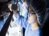 국내 연구진, 자가면역·염증성질환 치료제 물질 개발